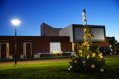 Kerstboom in de Coevering