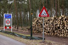 Het uitdunnen van de bossen Kempisch Landschap