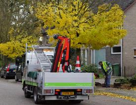 Werkzaamheden na een wijkschouw in de Coevering Geldrop