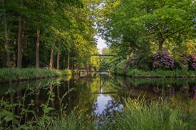 Landschapswandeling Herbertusbossen 2013